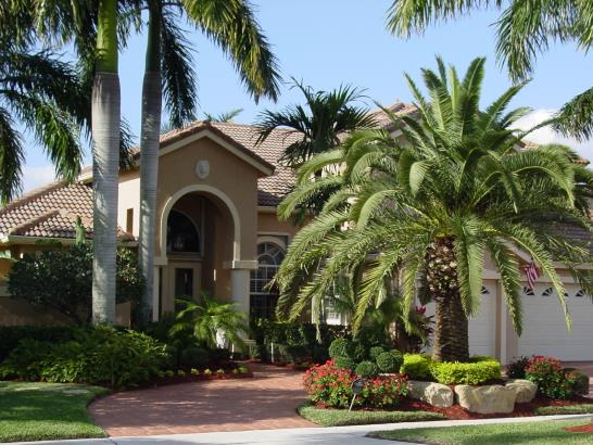 House Maintenance Plants Html on house lighting, house insurance, tree maintenance, house demolition, house real estate, grass maintenance, house plumbing, house palm tree identification, house design, house plants that clean the air, house plants and their names, house plants for fall,